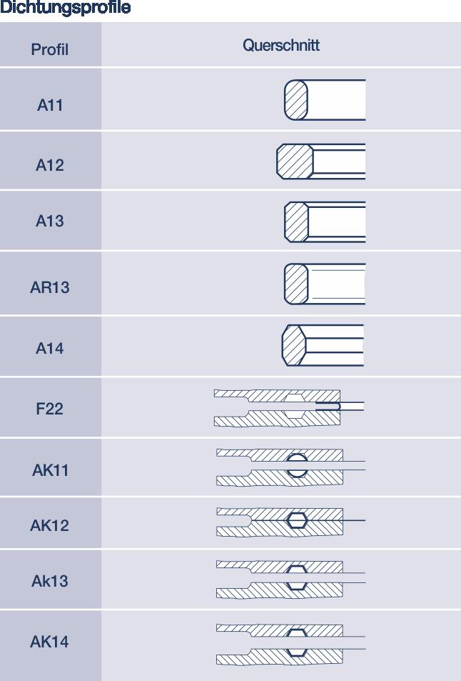 Metall-Dichtungen: Hier Ring-Joint-Dichtung im Profil